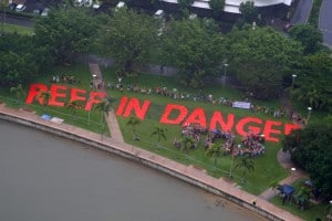 Reef in Danger