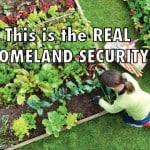 Real Food Security