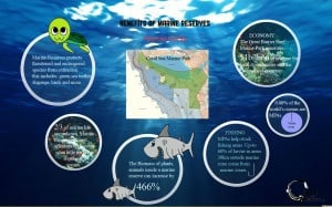 benefit of marine reserve phtoshop copy