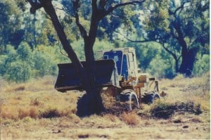 Clearing bulldozer knocking down single tree NB! PHOTO sourced from CAFNEC