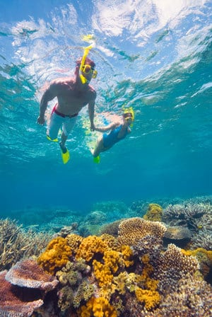 What is the future of the Great Barrier Reef – community survey