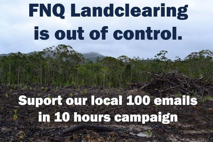 Halt the land clearing – reinstate the laws that protect our wildlife