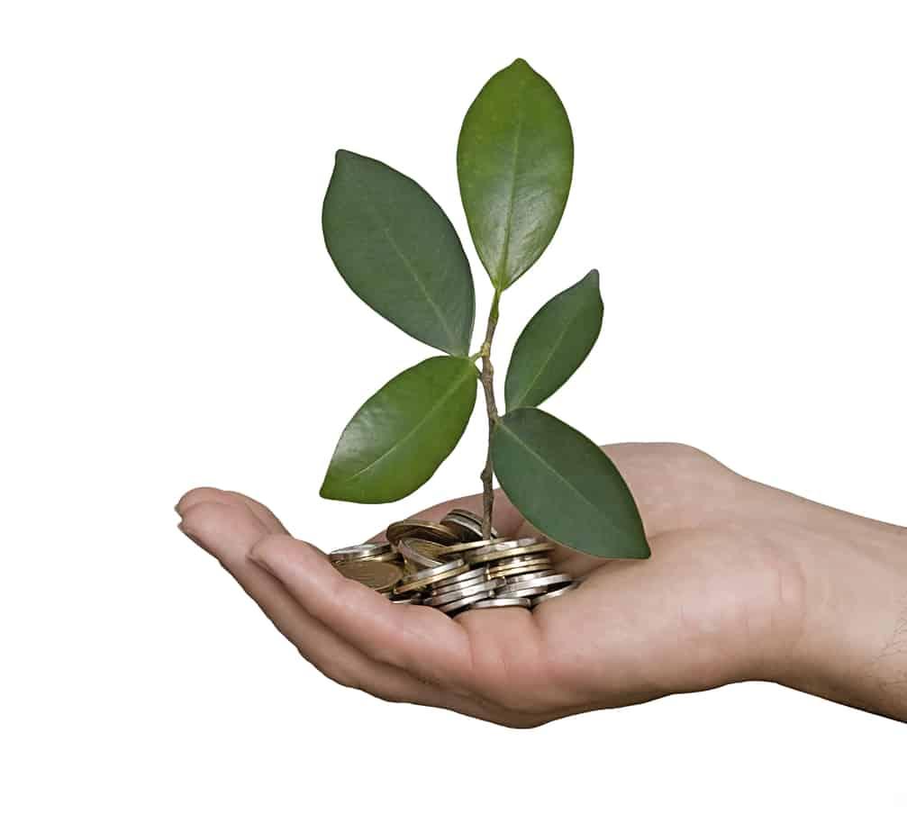 Finance: Sustainable Finance