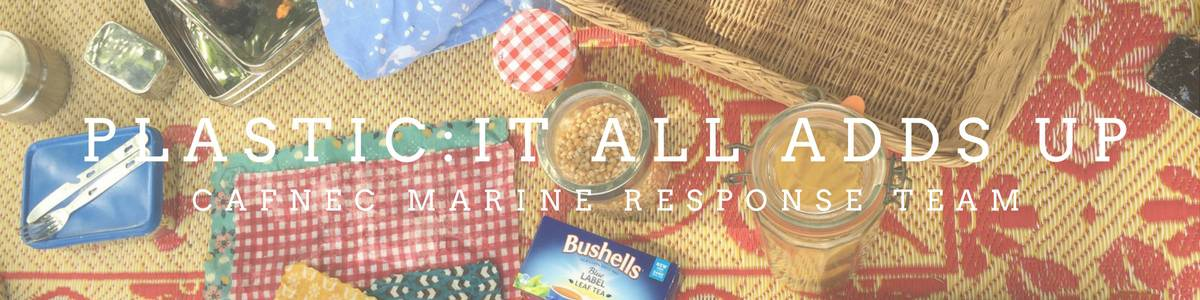 Plastic Free July Green Drinks – Special event!