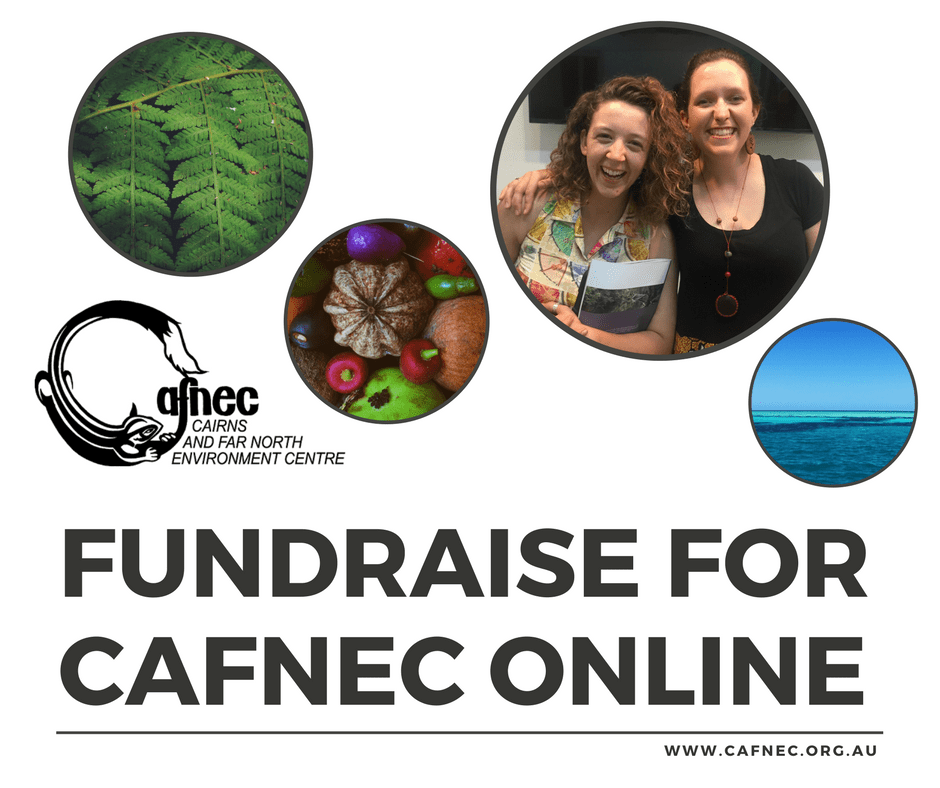 Fundraise for cafnec
