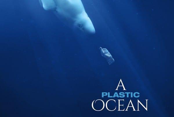 A Plastic Ocean: 2nd Cairns Screening
